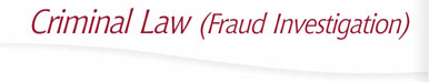 Criminal Law (Fraud Investigation)